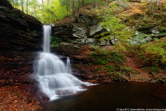 Sheldon Reynolds Falls, Ricketts Glen