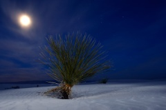 Twilight in White Sands